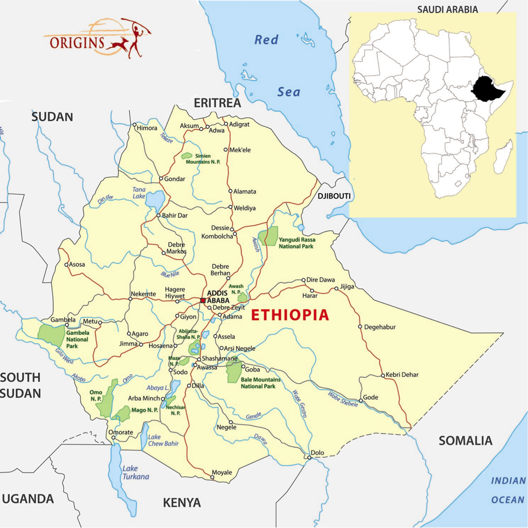 Ethiopia origins safaris a journey through ethiopias historic route is a trip back in time from the reign of king solomon ethiopia then known as abyssinia was the epicenter of gumiabroncs Gallery