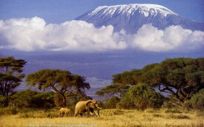 "CLIMB MOUNT KILIMANJARO – ""AFRICA'S MOUNTAIN OF GREATNESS"""